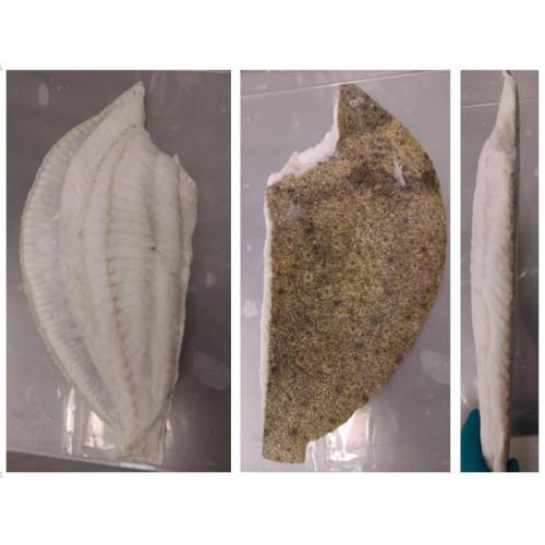 Calcan Intreg Eviscerat 1.5-2 kg